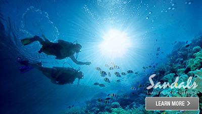 sandals inn jamaica scuba diving