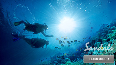 sandals coast south jamaica fun things to do scuba diving