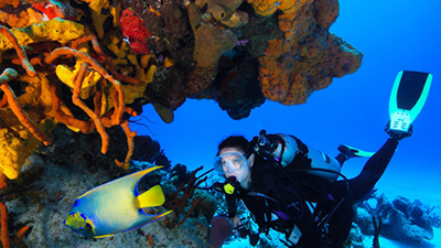 palace cozumel fun things to do scuba diving caribbean