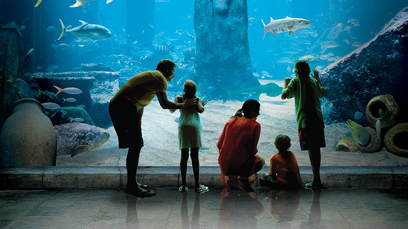 best reasons to stay at atlantis aquarium