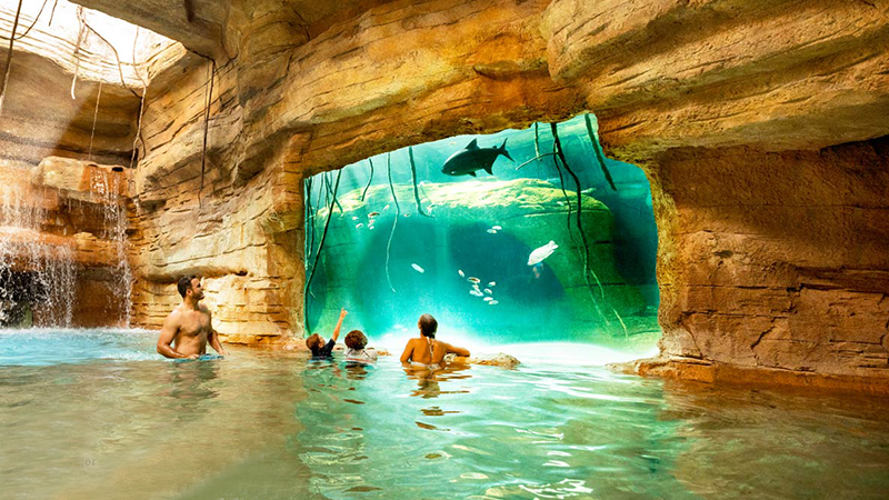 best-reasons-to-stay-at-atlantis-atlantis-adventures