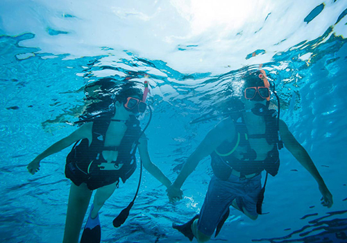 what to to do at sandals scuba diving