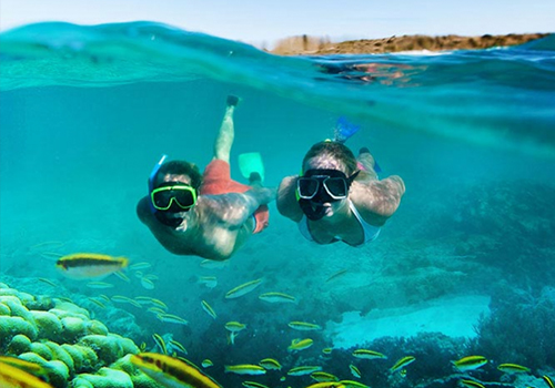 what to to do at sandals snorkeling g