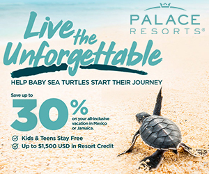 palace resorts baby sea turtles best travel deals