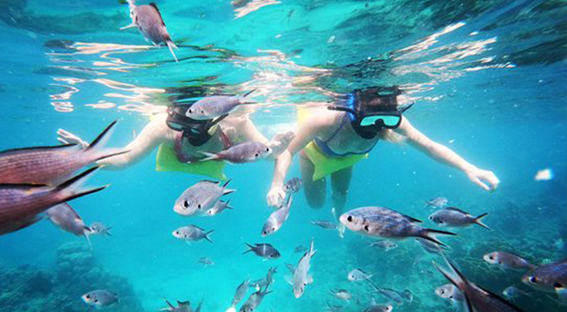 things to do in saint lawrence gap best snorkeling tour