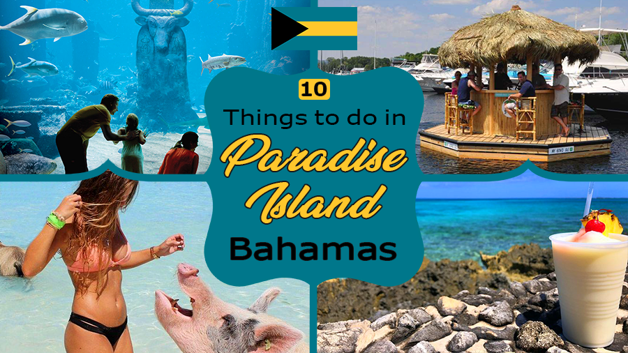 fun things to do in paradise island bahamas tourism