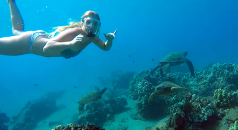 what to do in san juan puerto rico guided snorkel tour