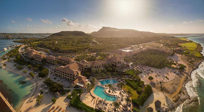 pet friendly caribbean vacations hyatt regency aruba resort