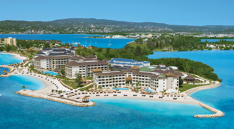 pet-friendly caribbean resorts secrets wild orchid montego bay jamaica
