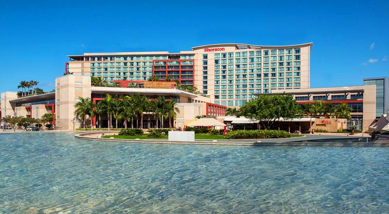 sheraton old san juan hotel pet-friendly hotel in caribbean