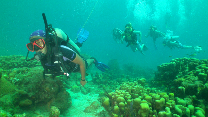 best things to do in castries st lucia certified scuba diving tour