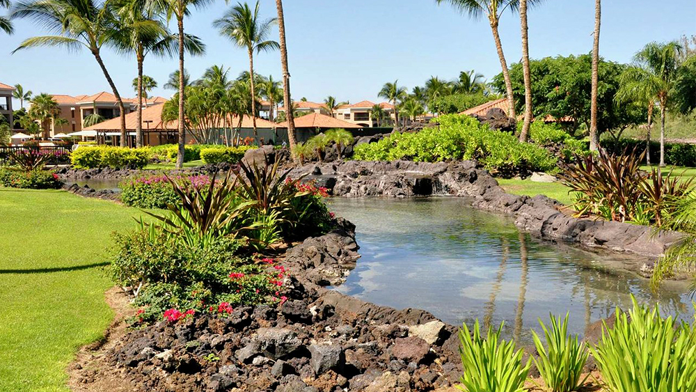 kohala suites by hlton grand vacations tropical resort