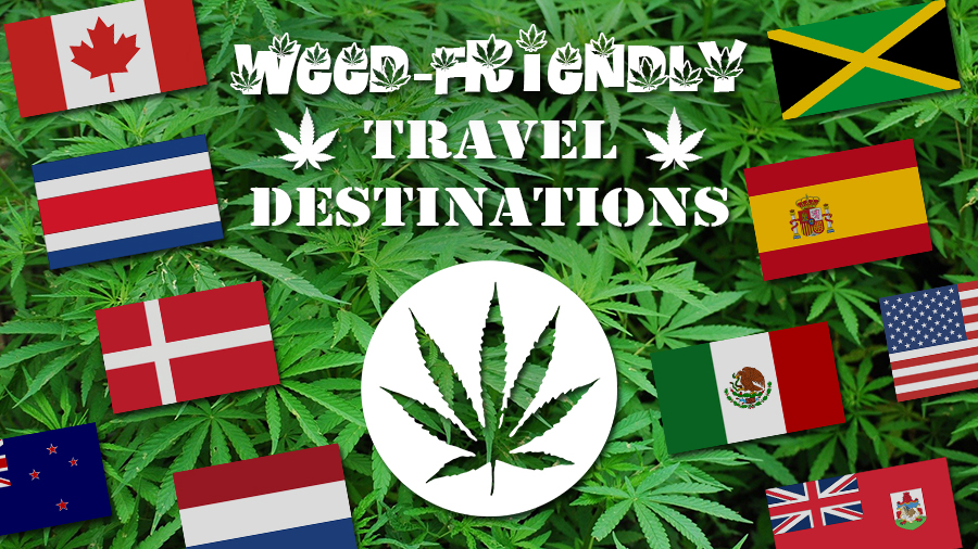 weed friendly travel destinations cannabis pot travel tips