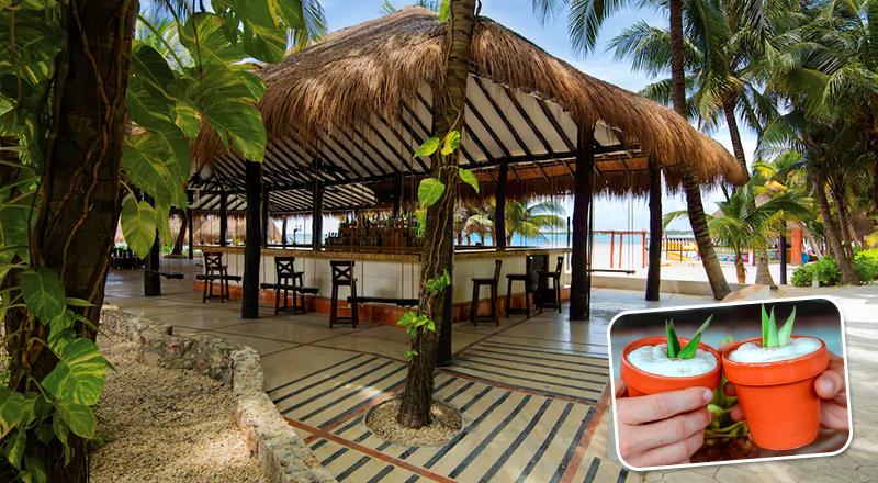 el dorado seaside suites mexico luxury hotel