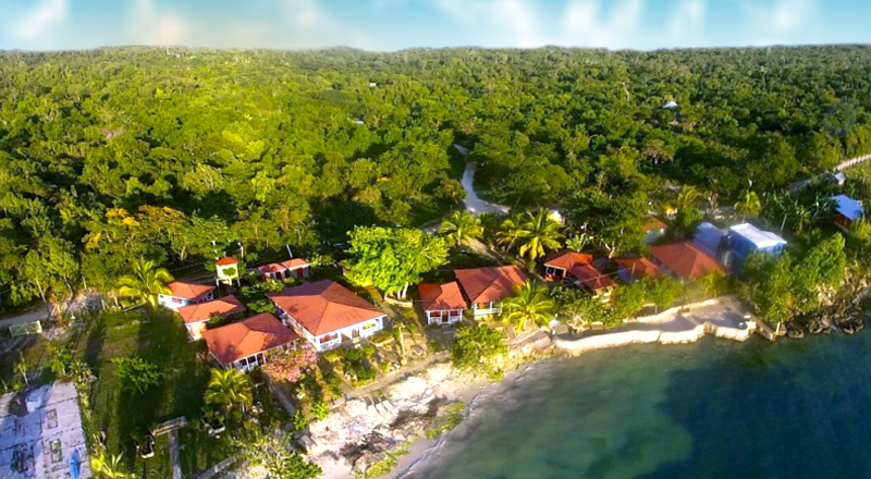 best weed-friendly hotels in jamaica little bay cabins jamaica cannabis vacation