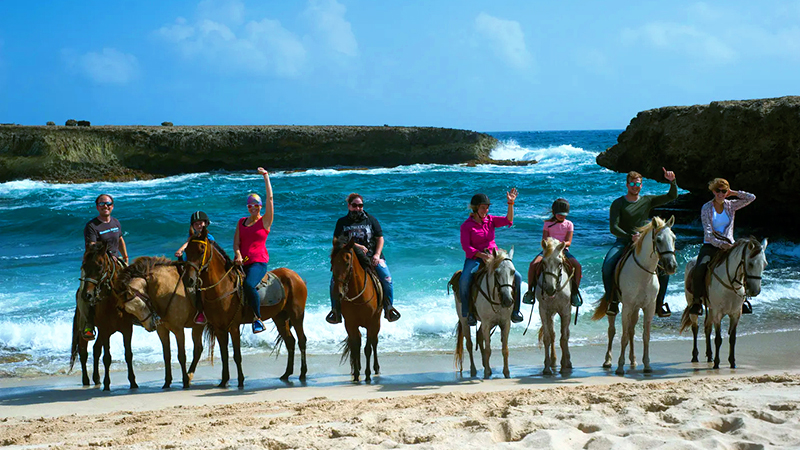 top things to do in oranjestad aruba horseback adventure on the northern coast fun beach adventure