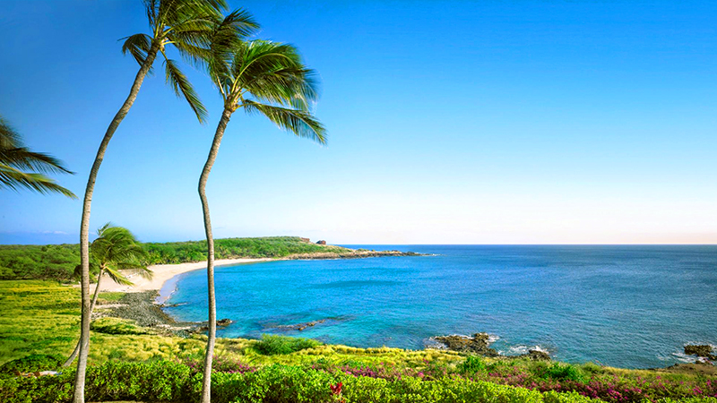 american islands for a tropical vacation lanai hawaii pacific destination