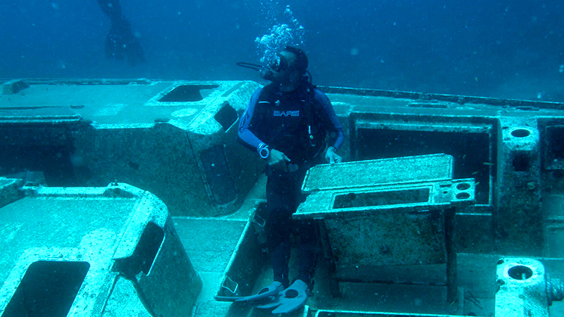 top things to do in la romana padi open water diver course underwater expedition