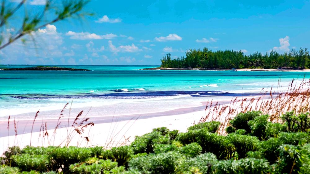 french leave resort beach vacation bahamas