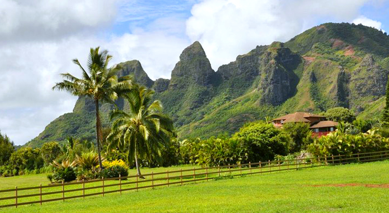 kauai movie adventure tour