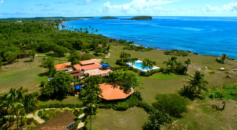 best pet-friendly hotels in puerto rico blue horizon boutique resort vieques caribbean beach vacation