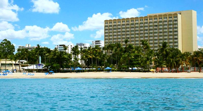top pet-friendly hotels in puerto rico royal sonesta san juan beachfront travel