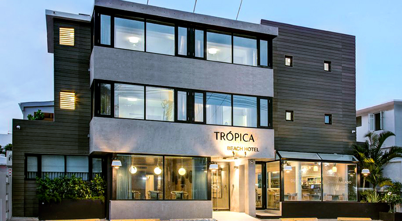 top pet-friendly hotels in puerto rico trópica beach hotel san juan luxury stay